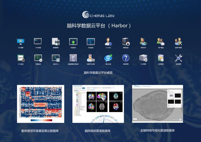 脑科学数据云平台