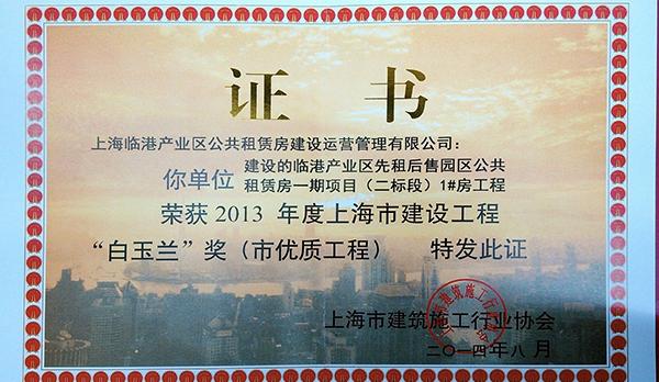 上海市白玉兰奖